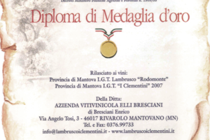 04_medaglia_rodomonte_clementini_2007