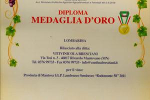 06_medaglia_oro_2012