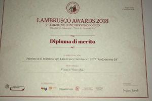 MEDAGLIA-D'ORO-RODOMONTE-58-SETTEMBRE-2018-MATILDE-DI-CANOSSA