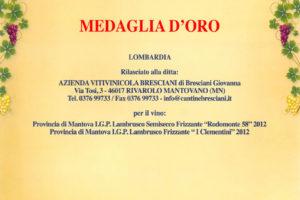 diploma-medaglia-oro-2013