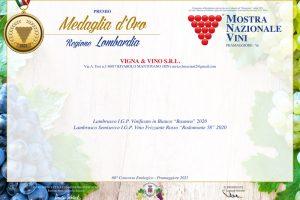 Medaglia-d'oro-Vigna-&-Vino-2021